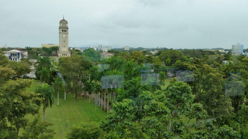 University of Puerto Rico 8